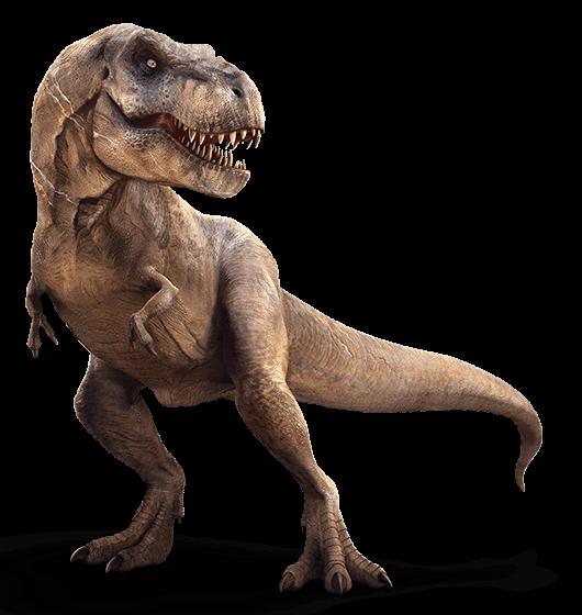 Tyrannosaurus dinosaur wiki fandom powered by wikia - Film de dinosaure jurassic park ...
