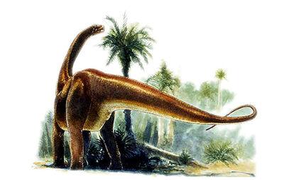 Datousaurus web