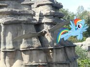 Rainbow Dash and the pteranodon