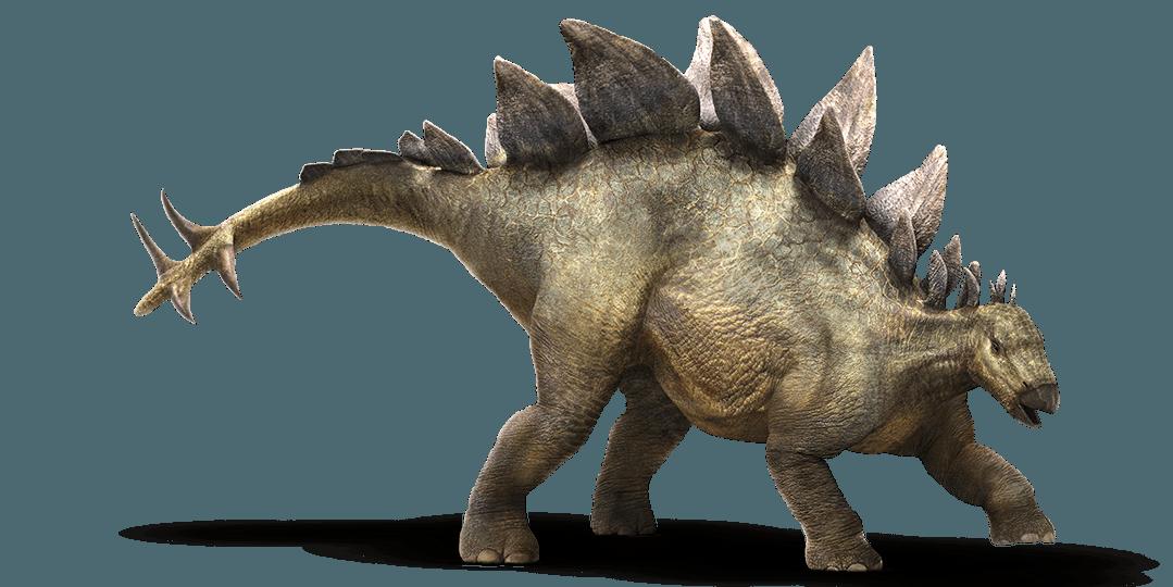 Resultado de imagen para stegosaurus