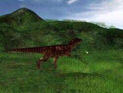 Allosaurusjueafd
