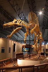 File-Mounted Spinosaurus