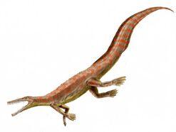 Mesosaurus BW