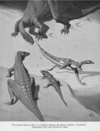 Neave Parker Plateosaurus