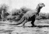 Outdated Trex Posture