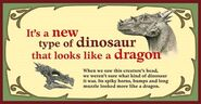 Draco label 1