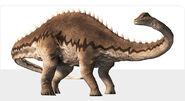 Diplodocus2