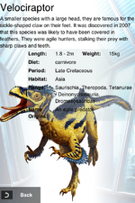 Album DNA Velociraptor