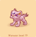 Wanwan pink.png