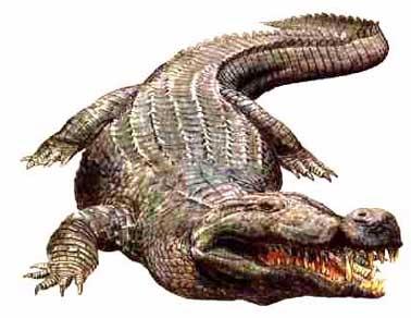 File:Deinosuchus.jpg
