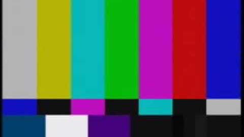 Television Color Bars on the troodon news