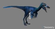 Troodon 2