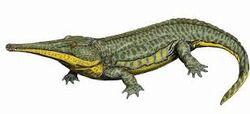 Prionosuchus 2