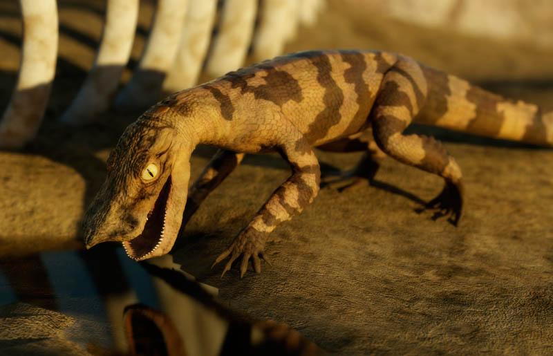 Anatosuchus | Dinosaur Alive Wiki | FANDOM powered by Wikia