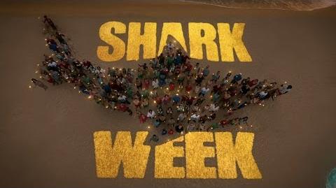 Shark Week Prehistoric Sharks Full Documentary