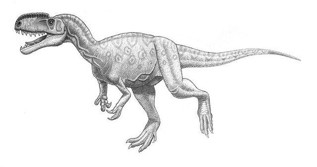 File:Monolophosaurus.jiangi.jpg