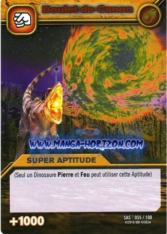 File:Fire Cannon TCG Card 2-Silver (French).jpg