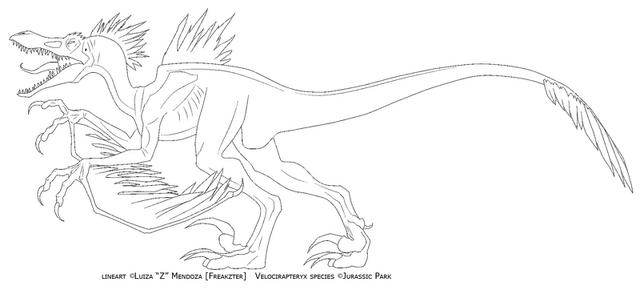 File:FREE LINEART velocirapteryx by Freakzter.png