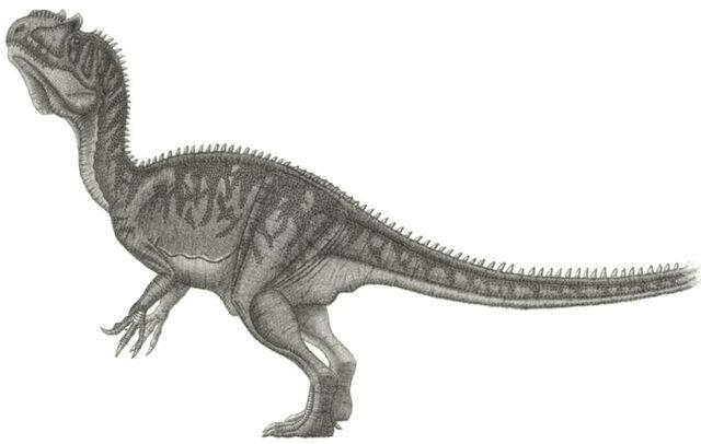 File:Piveteausaurus divesensis.jpg