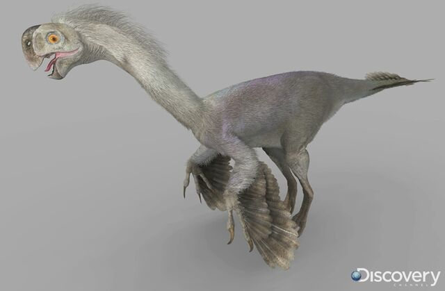 File:Gigantoraptor male.jpg
