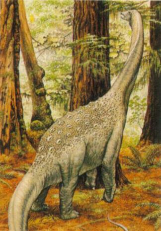 Protognathosaurus-unknown