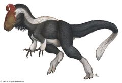 CryolophosaurusInfobox.jpg