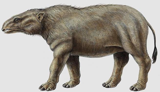 Phosphatherium