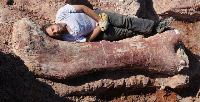 File:Titanosaur new.jpg