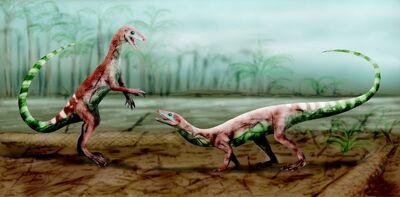Malerisaurus BW