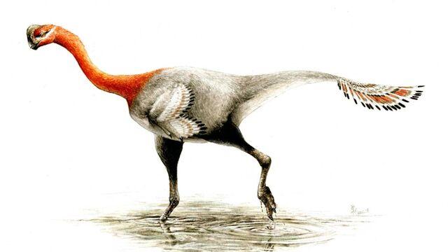 File:Apatoraptor pennatus.jpg