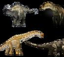 Sauropoda