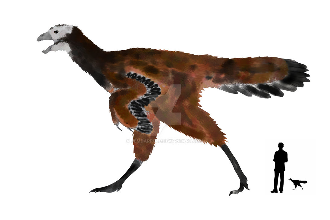 Calamospondylus
