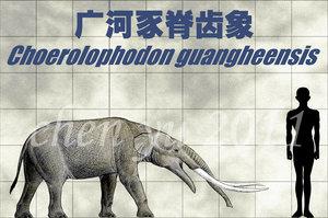Choerolophodon guangheensis by sinammonite-d4kciqz