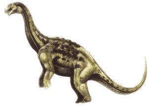 Aeolosaurus2