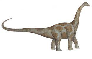 Pcab123 aepisaurus
