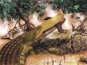 Aegisuchus