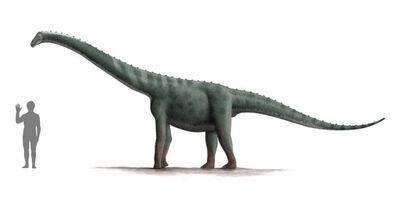 Lapparentosaurus-600x300