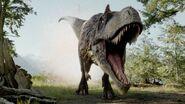 Dinosaurs albertosaurus