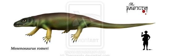 Mesenosaurus romeri