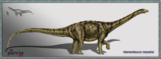 Adamantisaurus mezzalirai 2copia