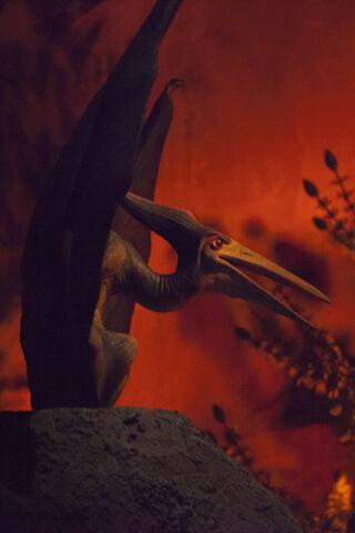 File:UOE pteranodon.jpg