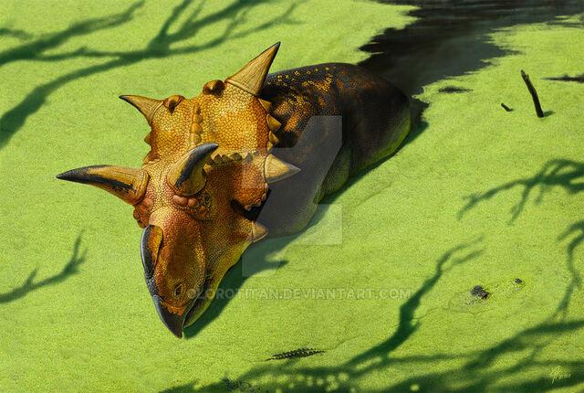 File:Xenoceratops by olorotitan-d5mpb76.jpg