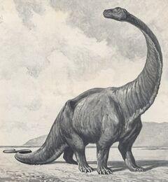 500 gigantosaurus dwdu1912cropped.jpg