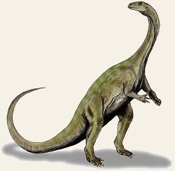 Glacialisaurus hammeri