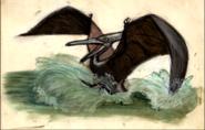 Pterano-sketch 1