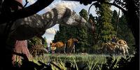 Brachylophosaurus/Gallery