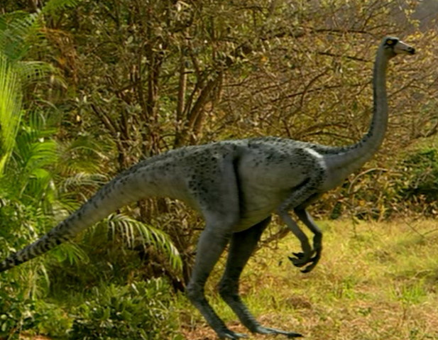 File:Ornithomimus infobox.png