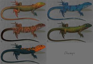 Chamops designs