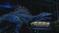 Spinosaurus arena
