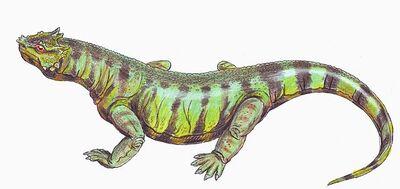 RhipaeosaurusDB12